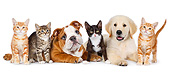 DOK 01 BK0050 01