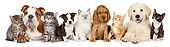 DOK 01 BK0052 01
