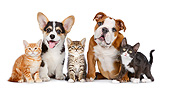 DOK 01 BK0067 01