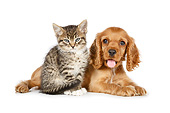 DOK 01 BK0069 01