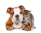 DOK 01 BK0073 01