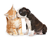 DOK 01 BK0078 01
