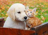 DOK 01 BK0092 01