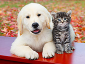 DOK 01 BK0094 01