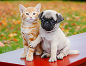 DOK 01 BK0102 01