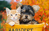 DOK 01 BK0105 01