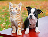 DOK 01 BK0107 01