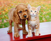 DOK 01 BK0109 01
