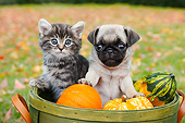 DOK 01 BK0114 01