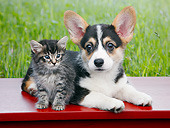 DOK 01 BK0120 01