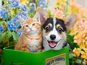 DOK 01 BK0124 01