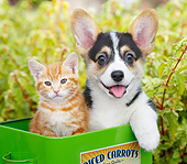DOK 01 BK0125 01