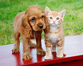 DOK 01 BK0126 01