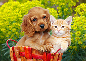 DOK 01 BK0128 01