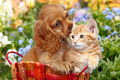 DOK 01 BK0129 01