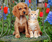 DOK 01 BK0130 01
