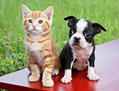 DOK 01 BK0139 01