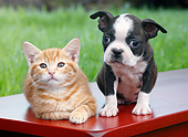 DOK 01 BK0140 01