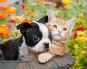 DOK 01 BK0147 01