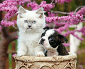 DOK 01 BK0148 01