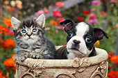 DOK 01 BK0151 01