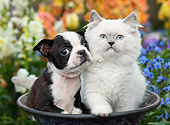 DOK 01 BK0152 01