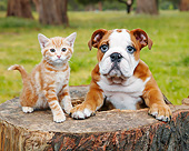 DOK 01 BK0158 01