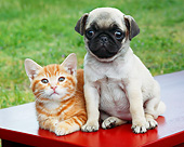 DOK 01 BK0170 01
