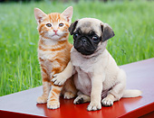 DOK 01 BK0172 01