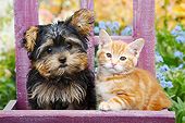 DOK 01 BK0174 01