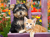 DOK 01 BK0175 01