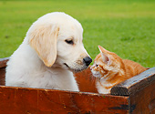 DOK 01 BK0180 01