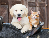 DOK 01 BK0181 01