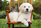 DOK 01 BK0184 01