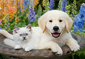 DOK 01 BK0187 01