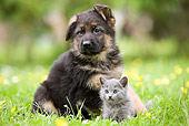 DOK 01 JE0002 01