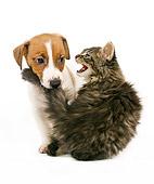 DOK 01 JE0004 01