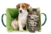 DOK 01 JE0005 01