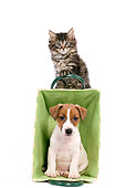 DOK 01 JE0006 01