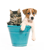 DOK 01 JE0007 01