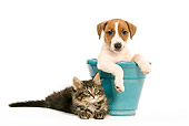 DOK 01 JE0008 01