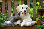 DOK 01 JE0018 01