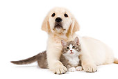 DOK 01 JE0020 01
