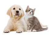 DOK 01 JE0021 01
