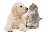 DOK 01 JE0023 01