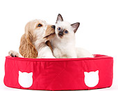 DOK 01 JE0026 01
