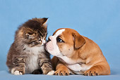 DOK 01 KH0004 01