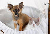DOK 01 PE0001 01