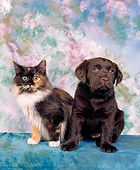 DOK 01 RK0006 07