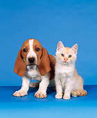 DOK 01 RK0030 13